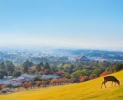 奈良県の町