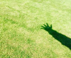 個人再生の体験談