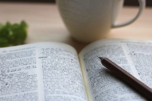 辞書で調べる
